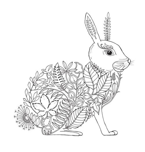秘密花園第二集魔法森林 Enchanted Forest 大人著色畫免費圖檔下載